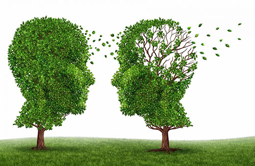 【健康身體】腦退化...跟肥胖有關?!