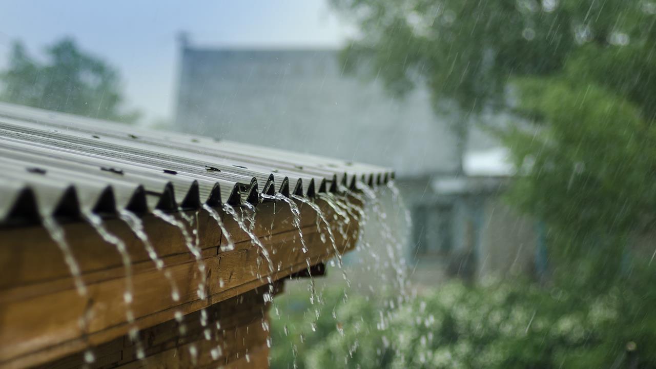 原來我們體內濕氣這麼重!4類食材輕鬆袪濕