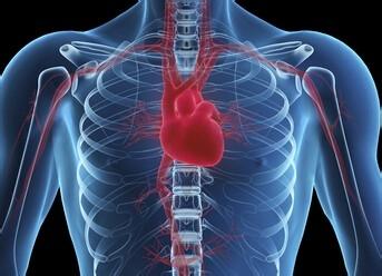 遺傳性心血管疾病基因檢查