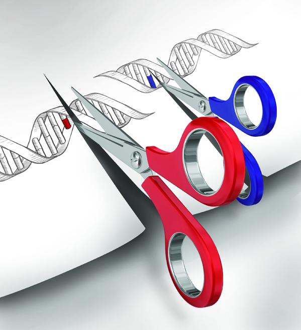 基因剪輯將首度於人類身上測試