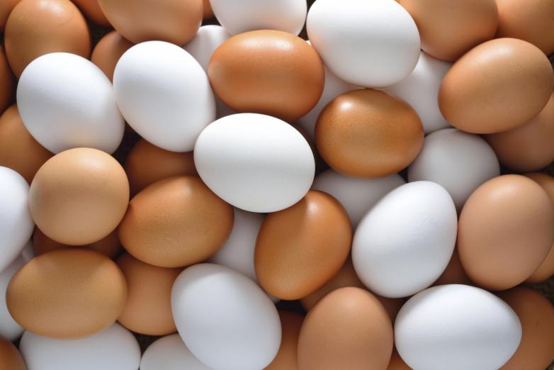 常吃雞蛋 膽固醇偏高?