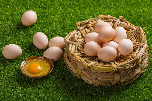 雞蛋過敏人群能否接種流感疫苗嗎?