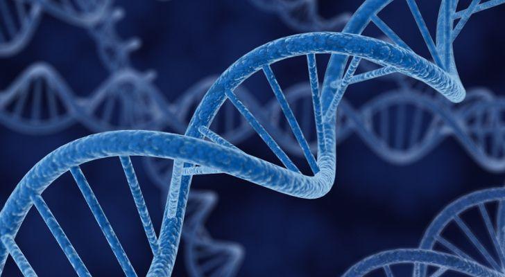 腫瘤基因檢測公司排名