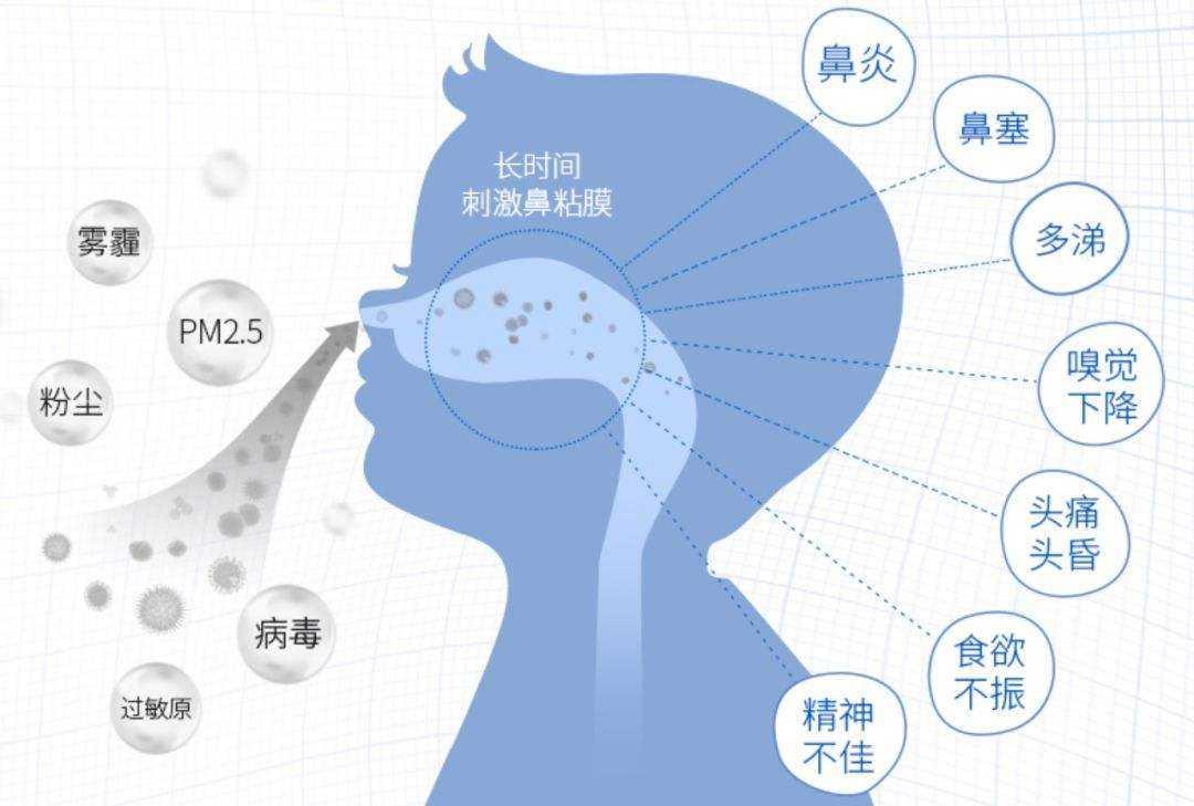 過敏性鼻炎是什麼?
