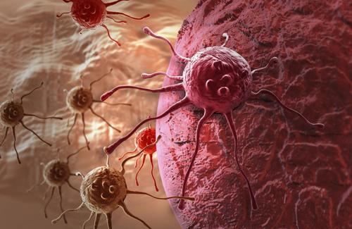 癌症的危險因素有哪些?