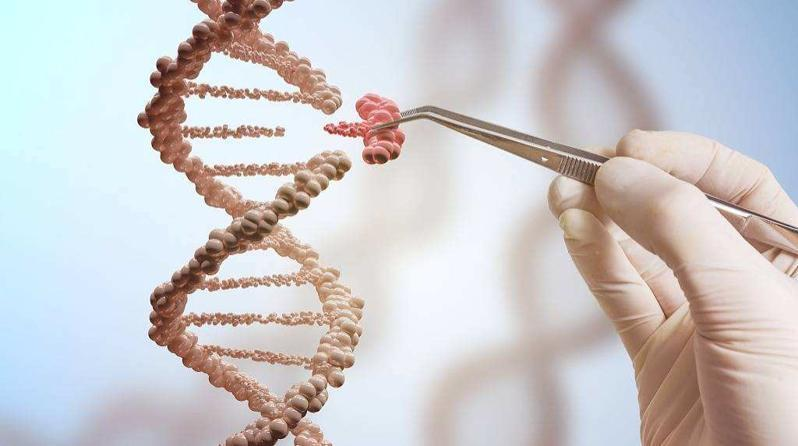 兒童常見疾病基因檢測可以檢測哪些常見疾病?