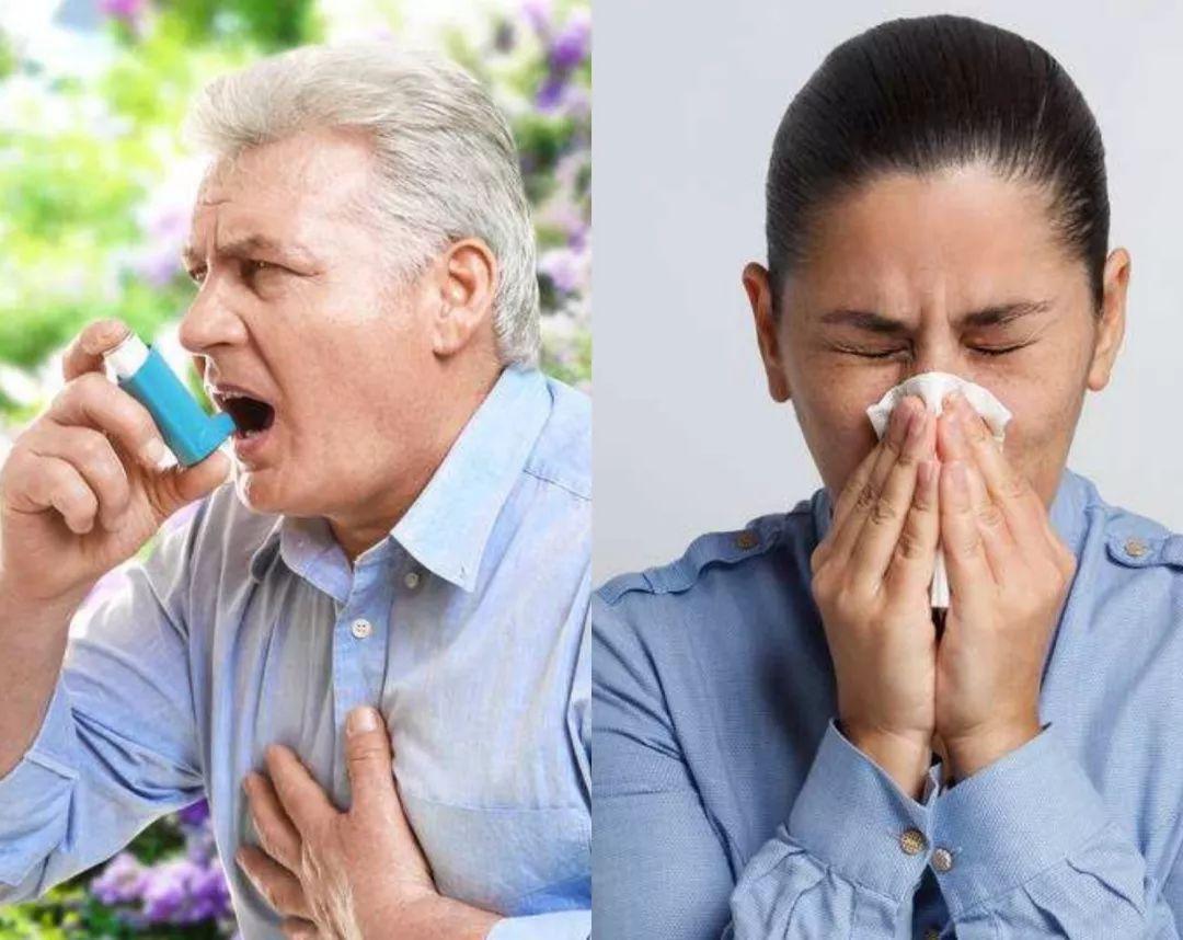 如何預防過敏發生?