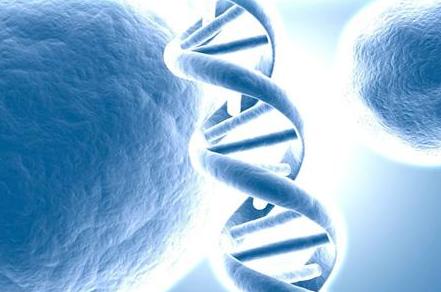 什麼是癌症基因檢測?