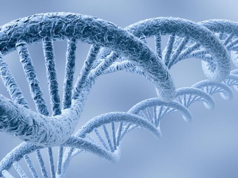 無創產前親子基因檢測做親子鑒定准嗎?