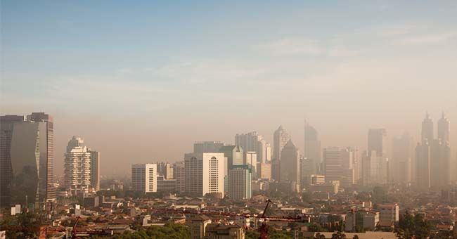 霧霾 ! PM2.5恐致乳癌、卵巢癌,毒物專家15招有效防治
