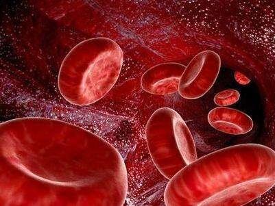 什麽是白血病
