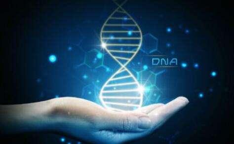 無創DNA性別鑒定的優點