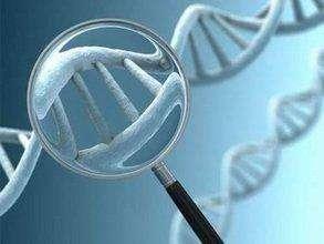 做好孕前基因檢測 其實可以很簡單