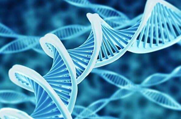 除了預知疾病,基因檢測還有哪些好處?