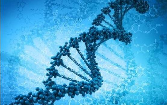 藥物治療一段時間,還需要進行癌症基因檢測嗎?