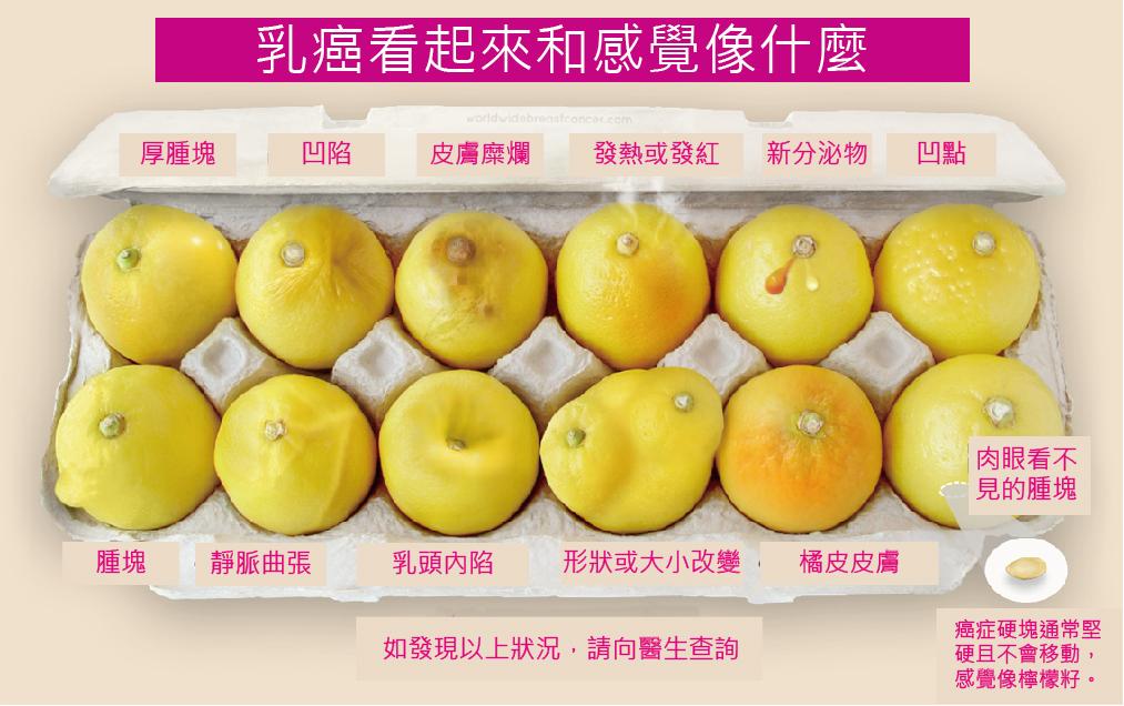 從12顆檸檬形狀圖 瞭解乳癌12種徵兆