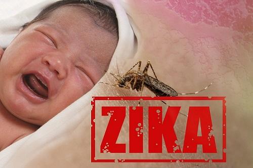 關於Zika寨卡病毒