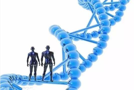 基因化驗並不能預測未來