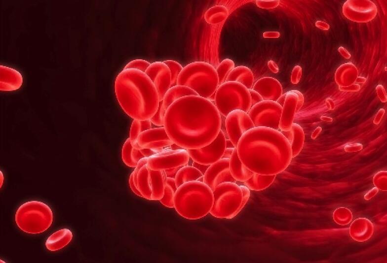 如何預防孩子患上地中海貧血
