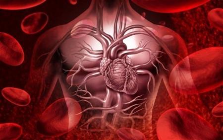 健康检查項目一:心血管疾病檢查