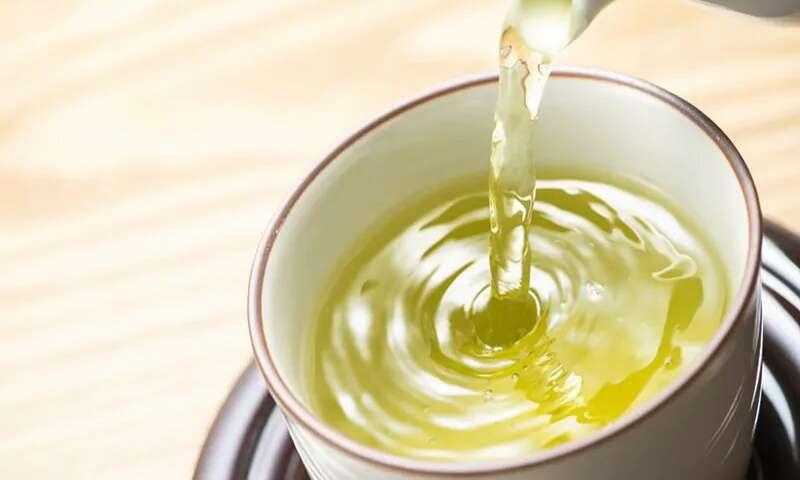 【健康飲食】綠茶當水飲? 隨時加重骨質疏鬆病症!