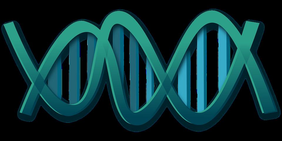 無創基因檢測有必要嗎?重視產檢才不讓疾病有機可乘